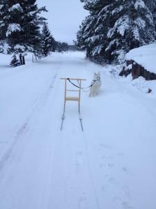 Åktur_snö