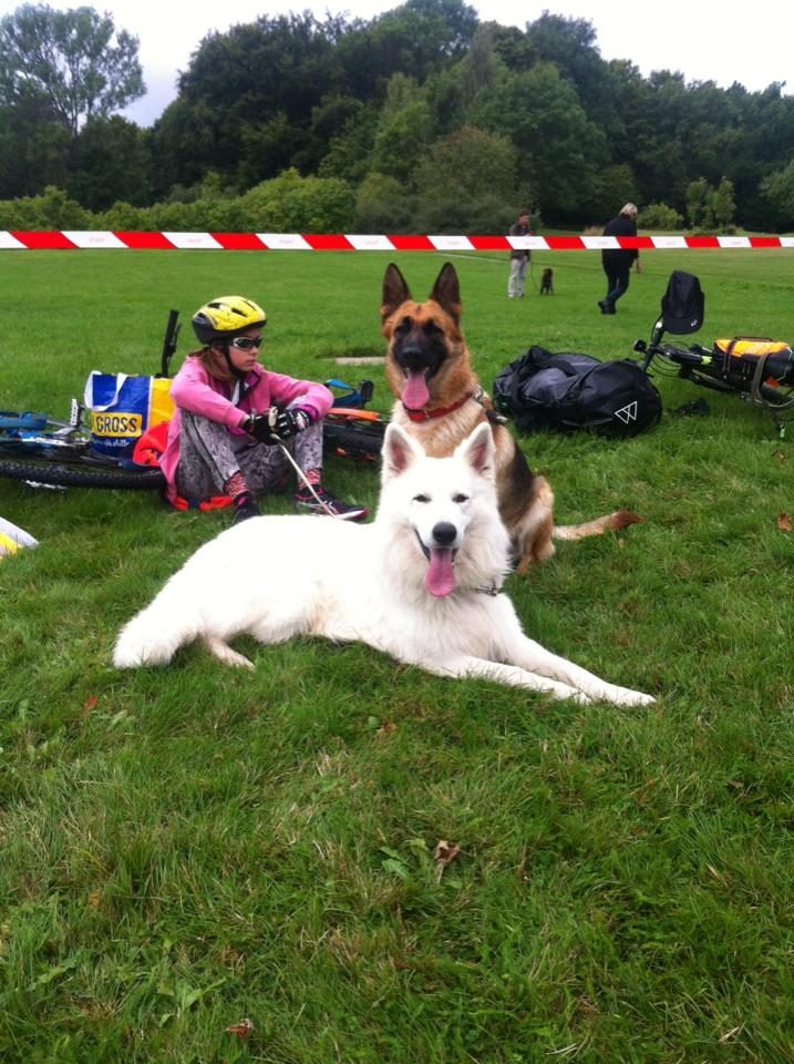 triathlon_hund1